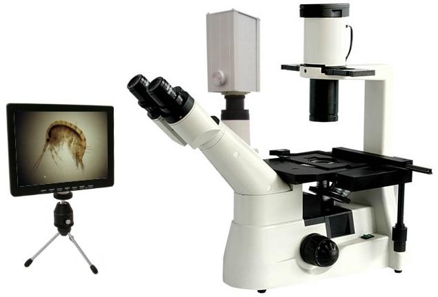 Medizinmikroskop labormikroskop biologiemikroskop